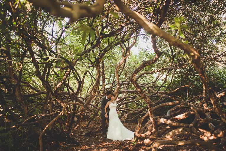 creative wedding photographer PME 25